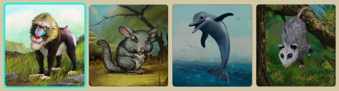 MFZ - Animal_Selection