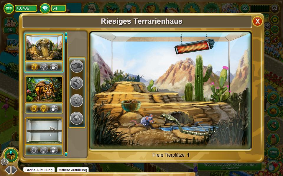 my free zoo cham leon und co ziehen im terrarium ein blog. Black Bedroom Furniture Sets. Home Design Ideas