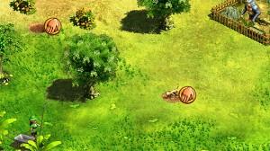Kapifari Erdmännchen