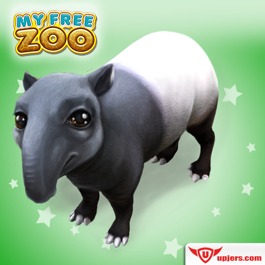 fb_tapir_520_520