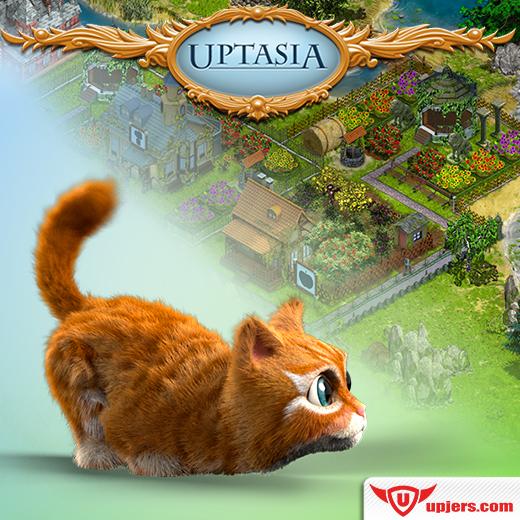 fb_upt_cat_pet