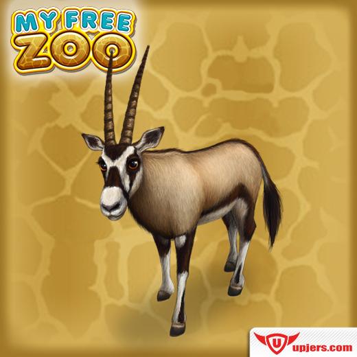 fb_mfz_oryx