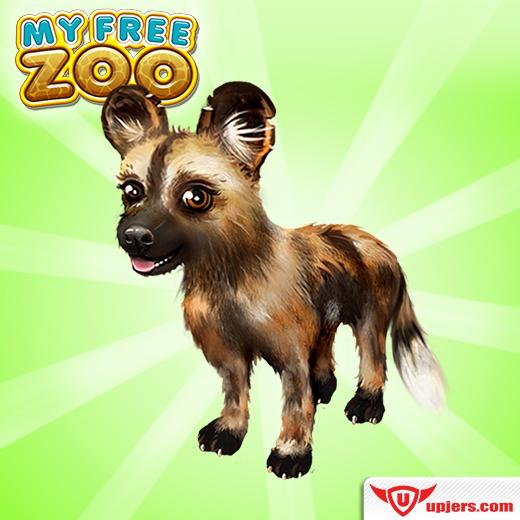 fb_mfz_african_wild_dog