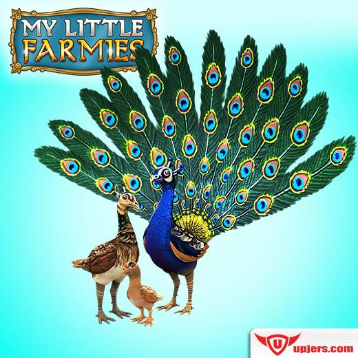fb_mlf_peacock