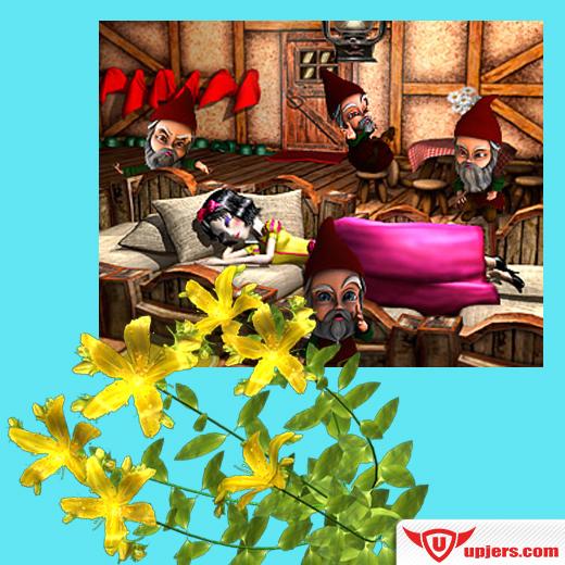 FB_MHE_herbgarden_event_jan