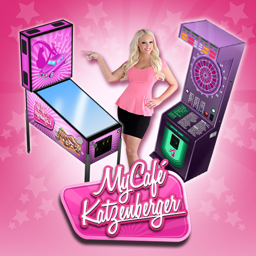 520_520_CatFlipper_DartAutomat
