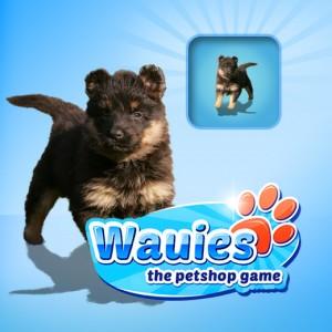 Wauies_520_520_neuen Hund