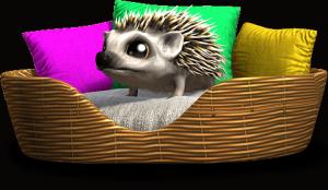 animalbreeder_hedgehog_standalone_00