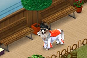 Rock n' Roll Hund
