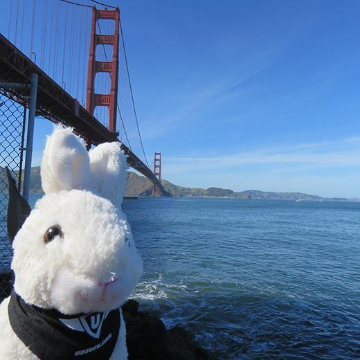 Uppy in den USA: San Francisco (1/4)