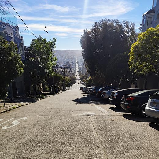 Uppy in den USA: San Francisco (2/4)